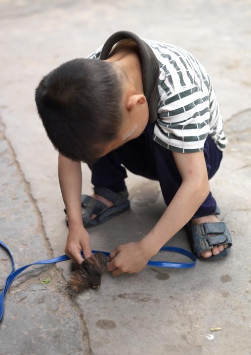 Kid Playing With A Bird, Tuan Shan Village, Yunnan Province, China