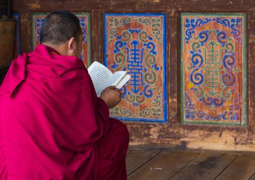 Tibetan monk reading in Shachong monastery, Qinghai Province, Wayaotai, China