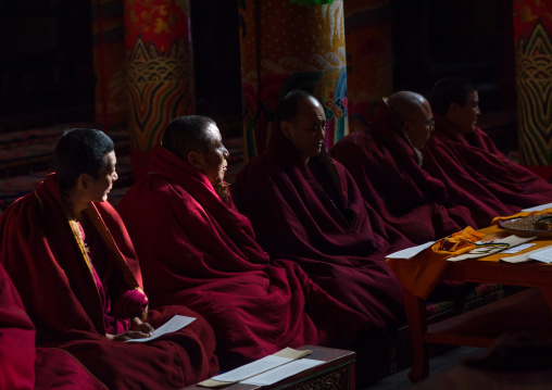 Monks praying and meditating inside Longwu monastery, Tongren County, Longwu, China