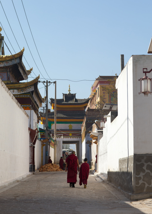 Tibetan monks walking in the street of Rongwo monastery, Tongren County, Longwu, China