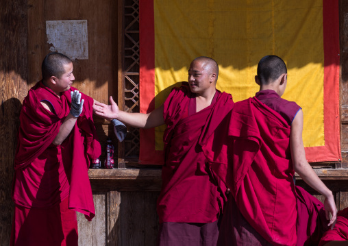 Monks in Rongwo monastery, Tongren County, Longwu, China