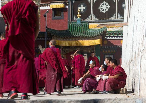 Monks painting the walls of a temple in Rongwo monastery, Tongren County, Longwu, China