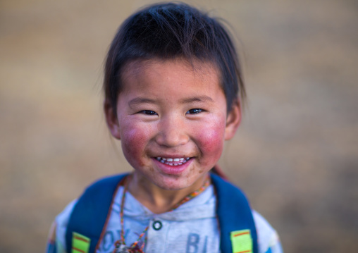 Portrait of a smiling tibetan nomad boy with his cheeks reddened by the harsh weather, Qinghai province, Tsekhog, China