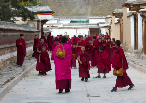 Tibetan monks coming out of the school in Labrang monastery, Gansu province, Labrang, China