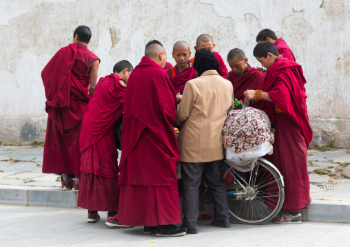 Young monks buying candies and food to a hui woman seller, Gansu province, Labrang, China