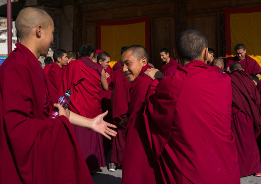 Monks in Rongwo monastery, Tongren County, Longwu, China