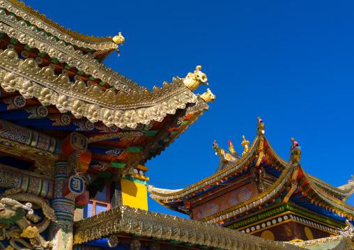Temple roofs in Rongwo monastery, Tongren County, Longwu, China