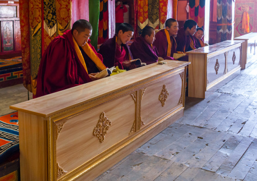 Monks from yellow hat sect praying in Bongya monastery, Qinghai province, Mosele, China