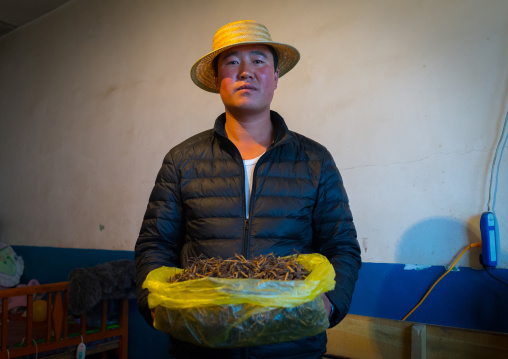 Hui man seller with a bag full of caterpillar fungus costing thousands of dollars, Qinghai province, Sogzong, China
