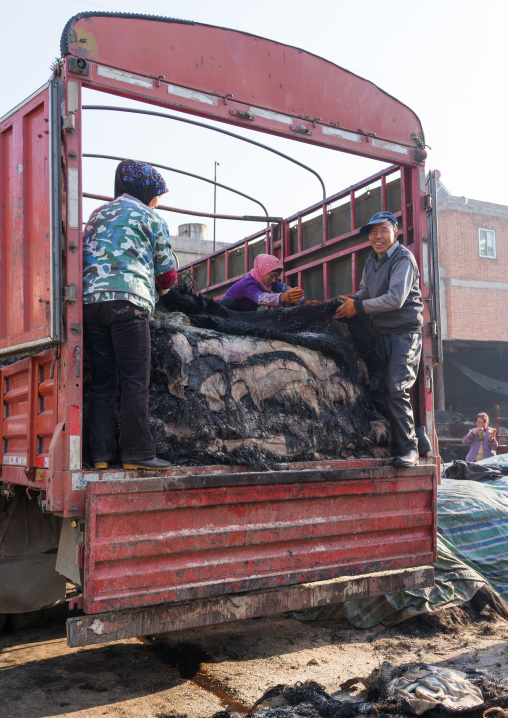 Muslim Hui people pulling yout yak skins from a truck, Gansu province, Linxia, China