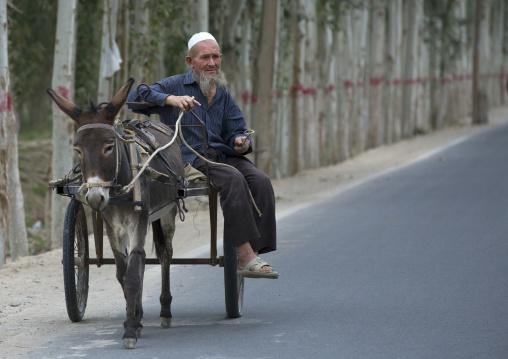 Old Uyghur Man Driving His Donkey, Hotan, Xinjiang Uyghur Autonomous Region, China