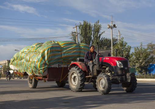 Uyghur Man Transporting Cotton, Yarkand, Serik Buya Market, Xinjiang Uyghur Autonomous Region, China