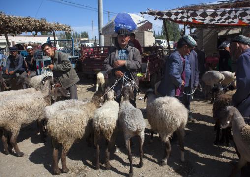 Sheeps For Sale In Serik Buya Market, Yarkand, Xinjiang Uyghur Autonomous Region, China