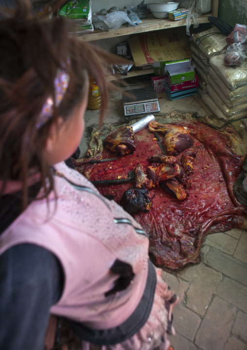Little Girl And Remains Of A Yak Near Karakul Lake, Xinjiang Uyghur Autonomous Region, China