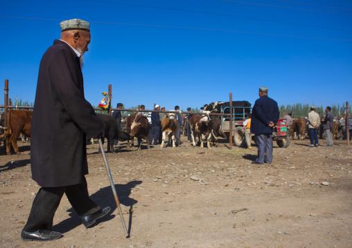 Uyghur Man In Kashgar Animal Market, Xinjiang Uyghur Autonomous Region, China