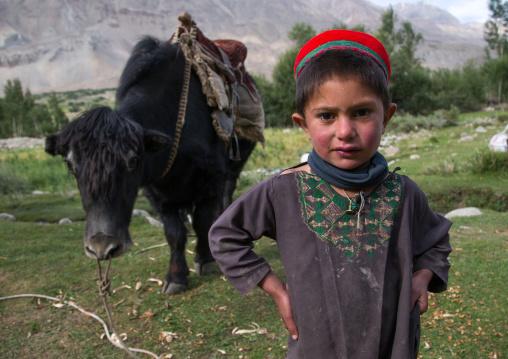 Wakhi boy in front of a yak, Badakhshan province, Wuzed, Afghanistan