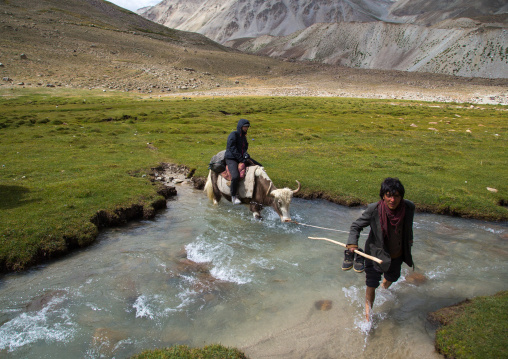 Tourist riding a yak crossing a river during a treck, Big pamir, Wakhan, Afghanistan