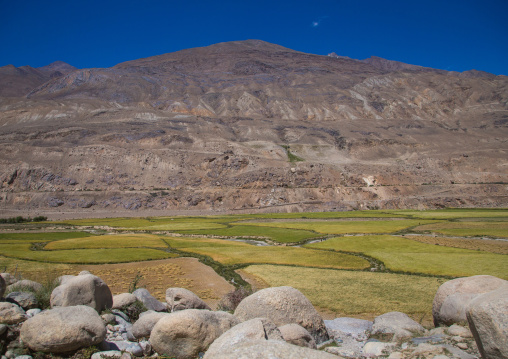 Farm fields in front of a mountain, Badakhshan province, Khandood, Afghanistan