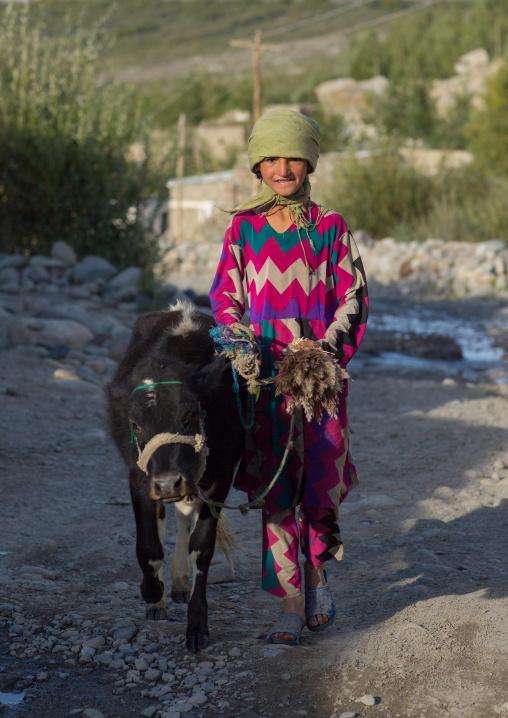 Afghan girl with a veal, Badakhshan province, Khandood, Afghanistan