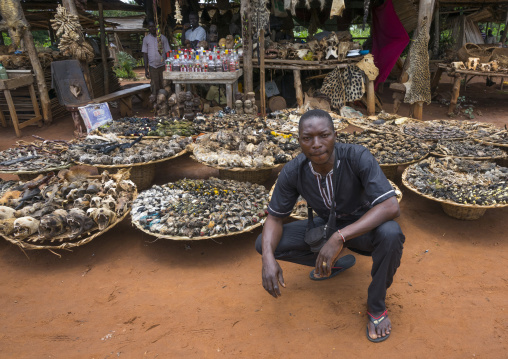 Benin, West Africa, Bonhicon, mister bebe in front of his voodoo market selling many cut heads and parts of dead animal