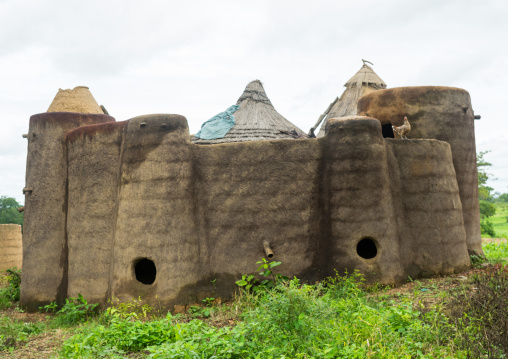 Togo, West Africa, Nadoba, traditional tata somba house with thatched roofs and granaries