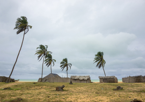 Benin, West Africa, Ouidah, ouidah cotonou road on the slave coast