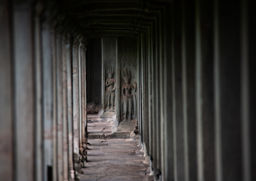 Empty corridor with columns inside a temple in Angkor wat, Siem Reap Province, Angkor, Cambodia