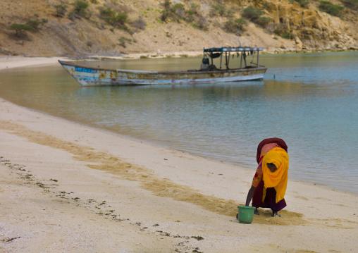 Eritrea, Horn Of Africa, Dahlak, woman collecting vongole in dissei afar village