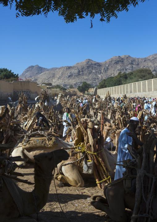 Monday Market, Anseba, Keren, Eritrea