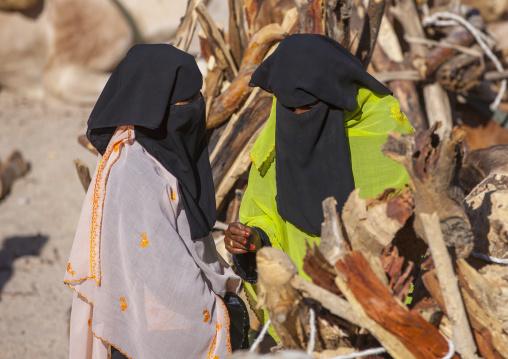 Veiled Woman In Monday Camel Market, Anseba, Keren, Eritrea