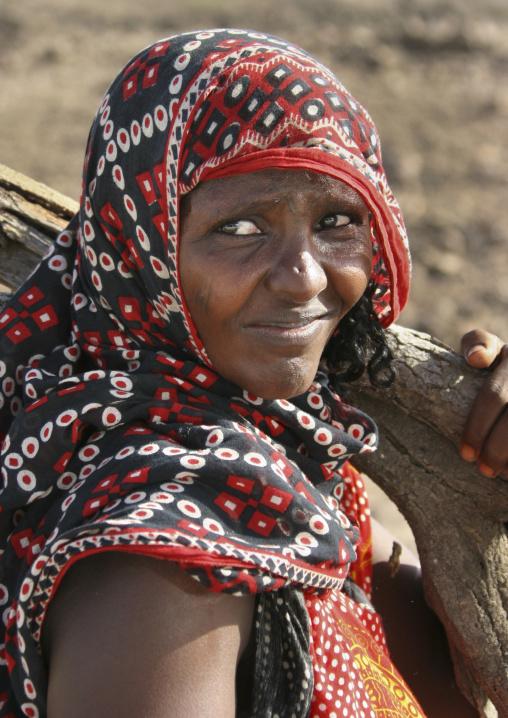 Afar Tribe Woman Carrying Wood In Danakil Desert, Eritrea