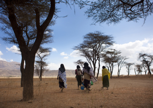 Karrayyu Tribe Women Carrying A Baby And Bags Under The Trees On Their Way To The Gadaaa Ceremony, Metahara, Ethiopia