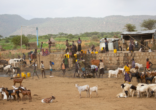 People and goats drinking in a well, Omo valley, Ethiopia