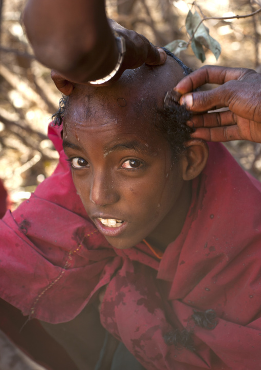 Portrait Of A Karrayyu Tribe Boy From Abdicating Clan Having His Head Shaved During Gadaaa Ceremony, Metahara, Ethiopia