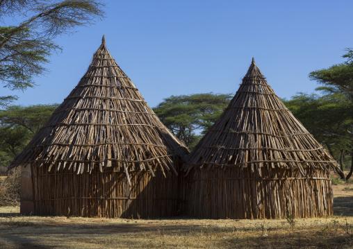 Traditional Village In Borana Tribe, Ola Alakadjilo, Ethiopia