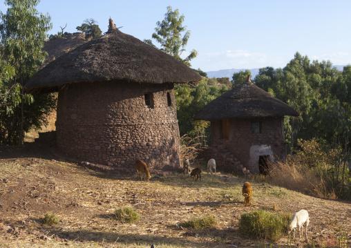 Traditional Houses, Lalibela, Ethiopia