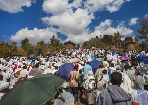 Pilgrims Crowd During Timkat Epiphany Festival, Lalibela, Ethiopia