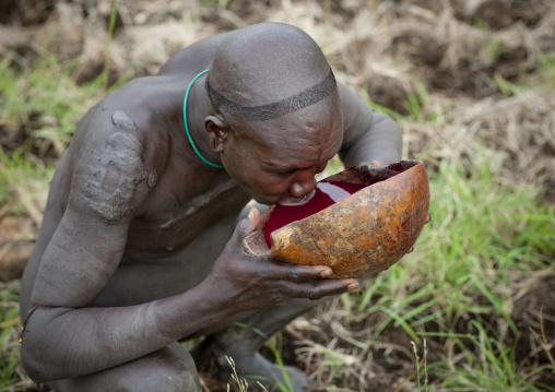 Suri Man Drinking Fresh Cow Blood, Turgit Village, Omo Valley, Ethiopia