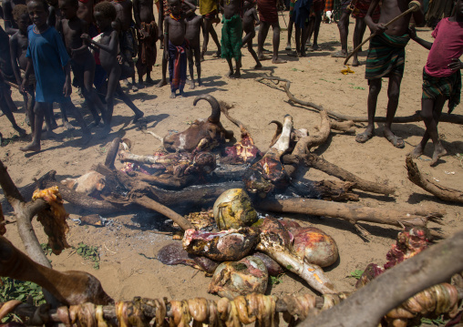 Tribe people cooking a cowduring the proud ox ceremony in the Dassanech tribe, Turkana County, Omorate, Ethiopia
