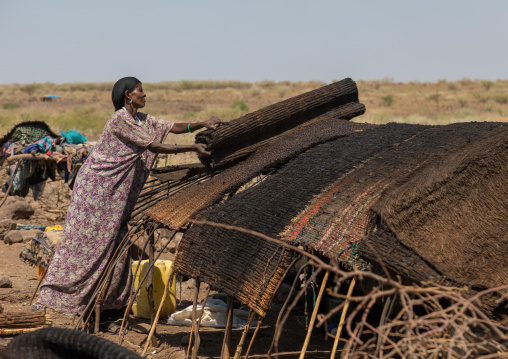 Issa woman making tent in a camp, Afar Region, Gewane, Ethiopia