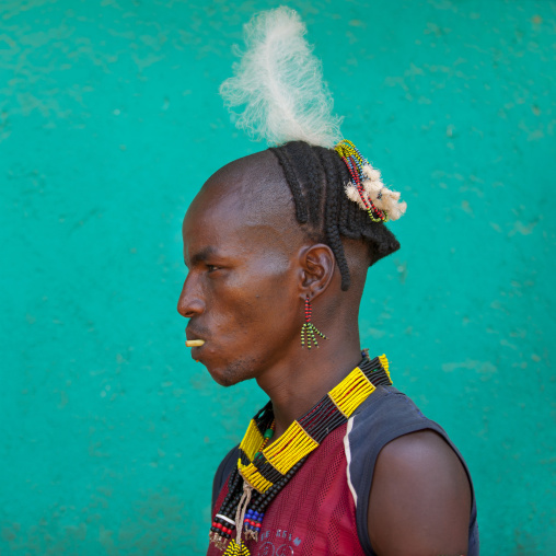 Young Hamar Tribe Man With Decorated Hair, Turmi, Omo Valley, Ethiopia