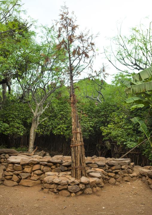 Generation Pole, Konso Tribe, Omo Valley, Ethiopia