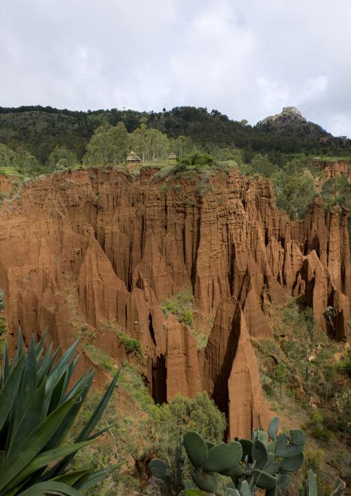The Ethiopian New York Area, Konso, Omo Valley, Ethiopia