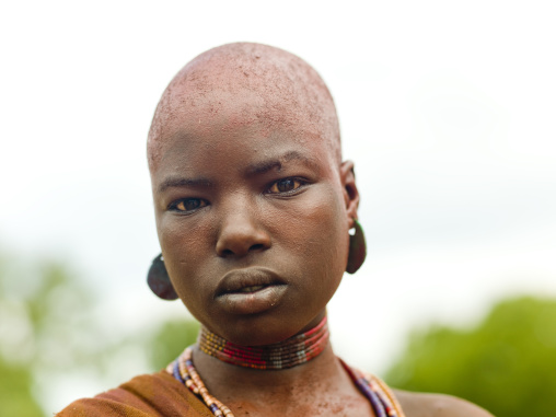 Shaved Ochre Dyed Hair hamer Tribe Woman Portrait during her uta times, Omo Valley, Ethiopia