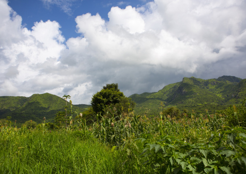 Landscape, Tulgit, Omo valley, Ethiopia