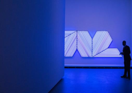 Bertrand Lavier Neon Lights In Louis Vuitton Foundation, Bois De Boulogne, Paris, France