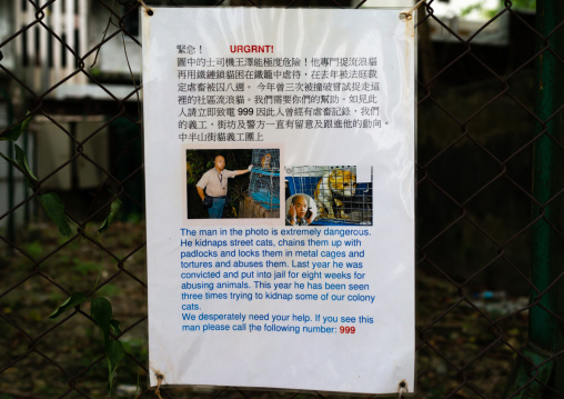 Warning poster about a man who kidnaps street cats, Special Administrative Region of the People's Republic of China, Hong Kong, China