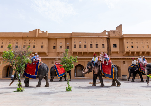 Elephant ride for tourists in Amer fort and palace, Rajasthan, Amer, India