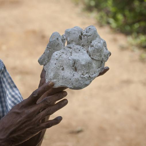 Modeling Of A Tiger Footprint, Periyar, India