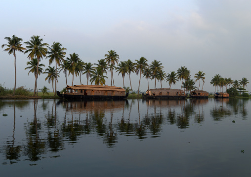 Houseboats Parked On The Banks Alongside Palm TreesOn Kerala Backwaters, Alleppey, India